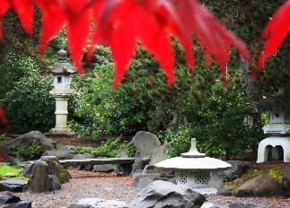red leaves and stone in the japanese garden